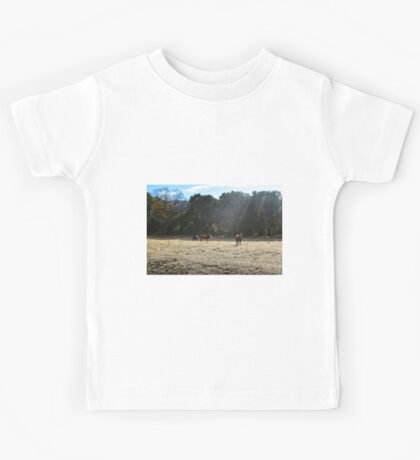 Cows, Santa Ysabel, California Kids Tee