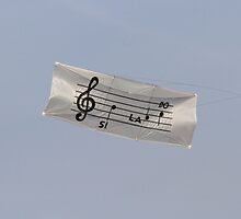 colorful kites music flying in the sky by spetenfia