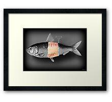 <º))))>< FISH WITH A TWIST PICTURE/CARD <º))))><  Framed Print