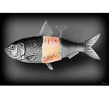 <º))))>< FISH WITH A TWIST PICTURE/CARD <º))))><  Photographic Print