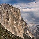 Yosemite by Kutay Photography