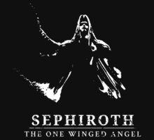 Sephiroth - The One Winged Angel by moombax