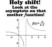 Hilarious 'Holy Shift! Look at the asymptote on that mother function' Math Geek T-Shirt Photographic Print