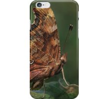 Comma Butterfly iPhone Case/Skin