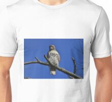 Juvenile Red-tailed Hawk Unisex T-Shirt