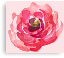 Watercolor Pink Peony Canvas Print