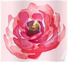 Watercolor Pink Peony Poster