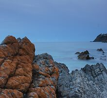 Red lichen rock and moon rise.  by Ian Hallmond