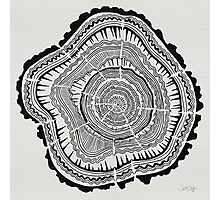 Tree Rings – Black on White Photographic Print