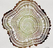 Tree Rings – Watercolor by Cat Coquillette