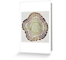Tree Rings – Watercolor Greeting Card