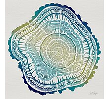 Tree Rings – Watercolor Ombre Photographic Print