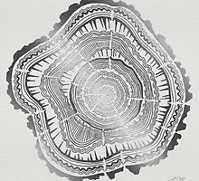 Silver Tree Rings by Cat Coquillette