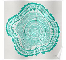Turquoise Tree Rings Poster
