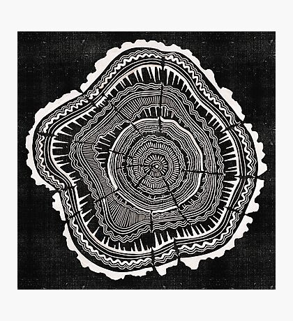 Woodblock Tree Rings Photographic Print
