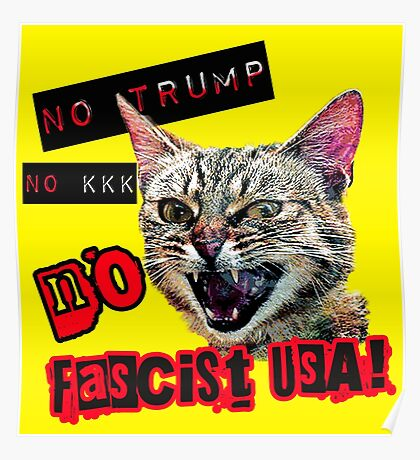 No Fascist USA Cat Poster