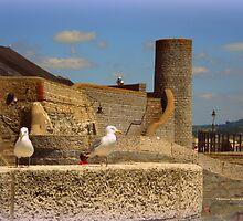 Historic Lyme Regis by Charmiene Maxwell-Batten