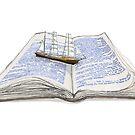 Read in sea by hazin