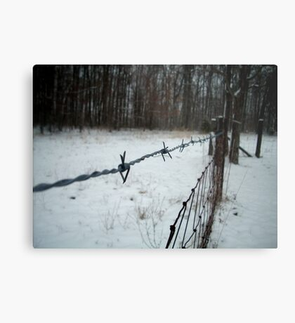 Cold Wire Metal Print