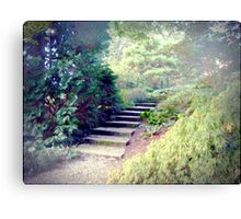 A Day At The Arboretum #2 - The Ascent Canvas Print
