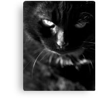 That Look Canvas Print