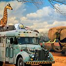 Safari Bus by Larry Costales