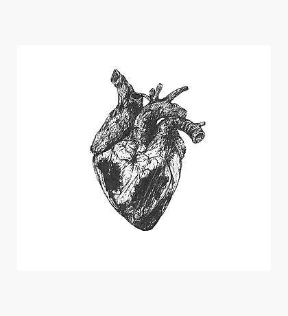 feel your heart beating Photographic Print