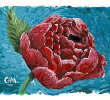 peony by Gregory Moore