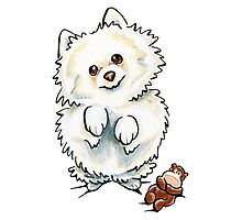 Pomeranian Boo Boo Photographic Print