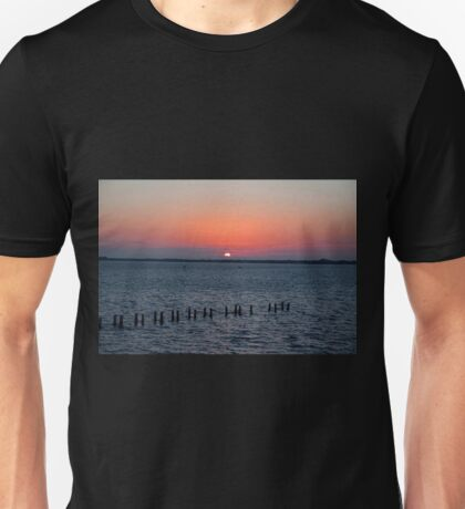 Firefly Finish Unisex T-Shirt