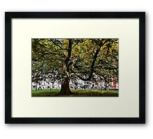 Cathedral Square ~ Exeter Framed Print