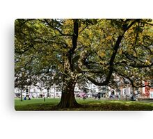Cathedral Square ~ Exeter Canvas Print