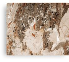 Marble Texture 12 Canvas Print