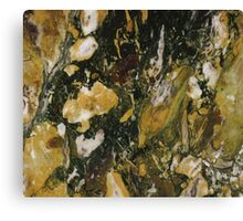 Marble Texture 13  Canvas Print