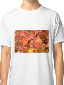 Red leaf shrub plant. Classic T-Shirt