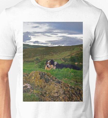 King of the County. Unisex T-Shirt