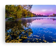 Foggy early morning on the river Canvas Print