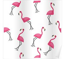 All you need is flamingo! Poster