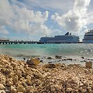 The View from Costa Maya  by John  Kapusta