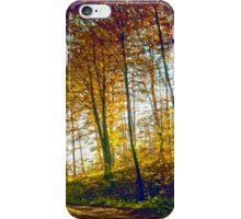 Autumn in forrest iPhone Case/Skin