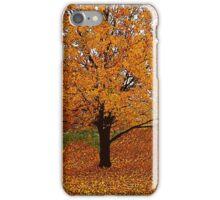 Autumn Impressions #3 iPhone Case/Skin