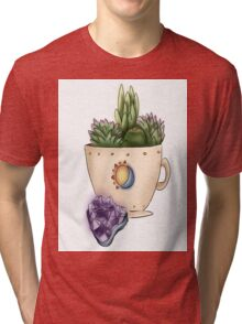 Succulents and Amethyst  Tri-blend T-Shirt