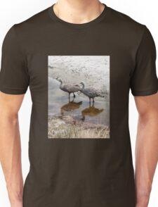 Cape Baron Geese Feeding Unisex T-Shirt