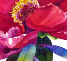 Magenta Peony Watercolor Sticker