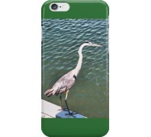 Tri-Colored Heron, on the Wall iPhone Case/Skin