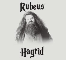Hagrid by brookeddrews