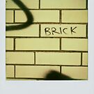 The Brick by Jean Beaudoin
