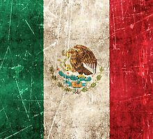 Vintage Aged and Scratched Mexican Flag by Jeff Bartels