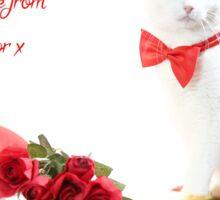 Junior Valentine Sticker