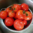 Fresh Pickin's.... by Diane Arndt